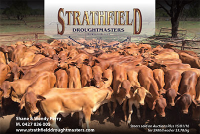 Strathfield Droughtmasters