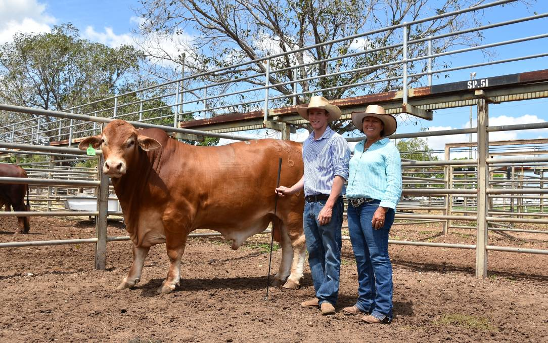 Strathfield 9JE Joker who sold for $12,000 with vendor Josh Perry and buyer Donna Finger, Lake Lofty.